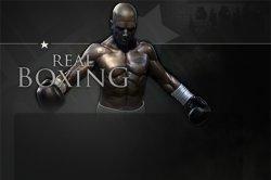 Первые подробности REAL BOXING от разработчиков Vivid Games